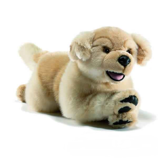 Peluche chien golden retriever 27 cm