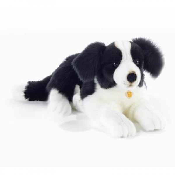 Peluche chien Border Colley 50 cm